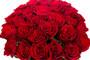 Красные розы Кения 50 см