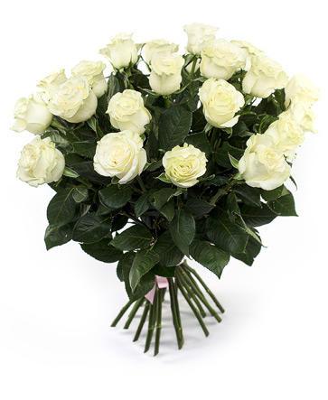 Белые розы 50 см крупный бутон