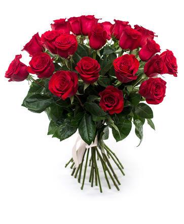 Красные розы 50 см крупный бутон