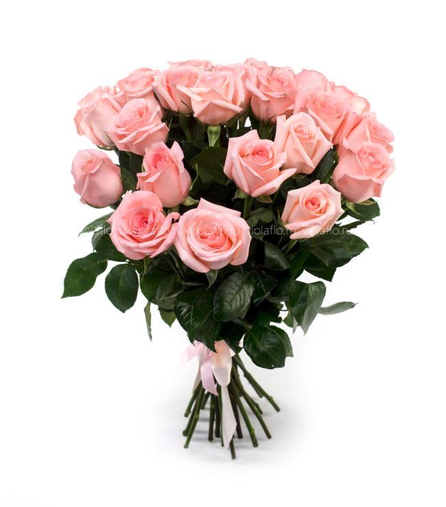 Розовые розы 50 см крупный бутон