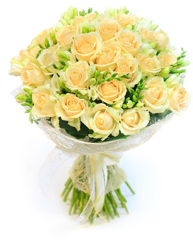 Цветок кувшинка  водяная лилия описание видов растения и