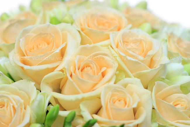 Букет чайных роз