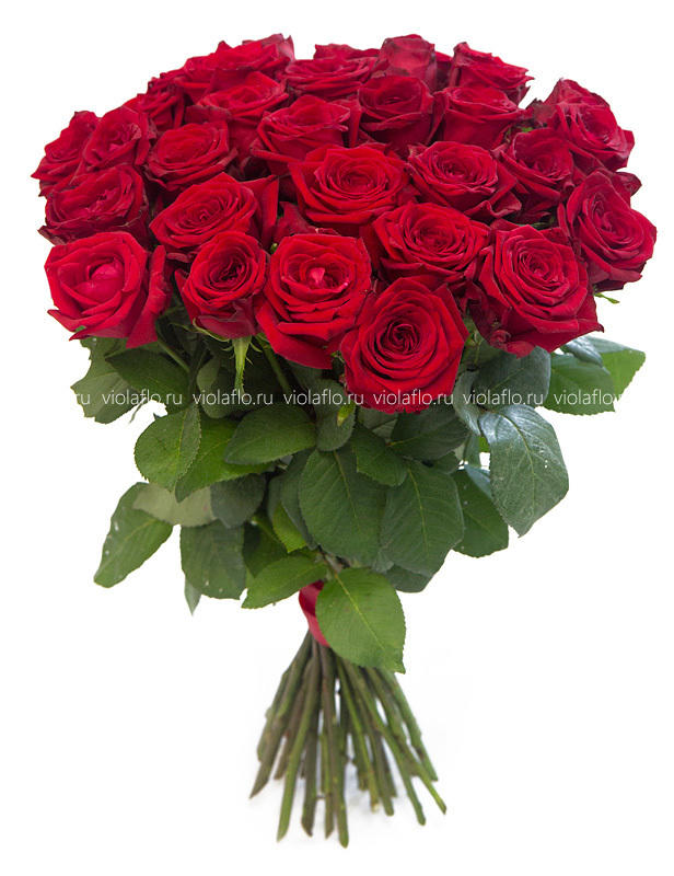 Красные розы пр-во Россия.