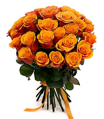 Чайные розы Россия 50-60 см