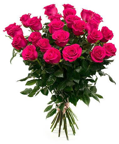 Розы «Готча» длинные 70 см