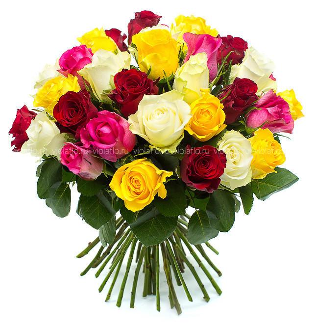 Розы кения микс 40 см