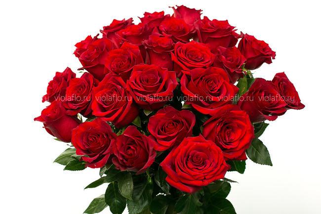 Красные розы длинные 80 см