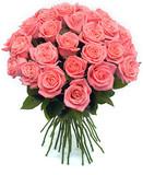 Розовые розы пр-во Россия.