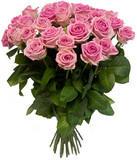 Розы «Аква» Россия 50-60 см